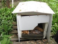 The winter shelter for the cats.