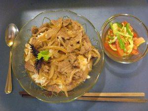 Donburi and Nihaizu salad
