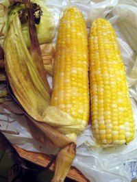 Roasted ears of corn