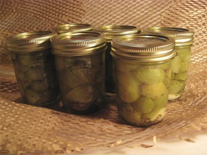 Dilled Green Tomato Pickles