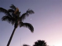Venus and Jupiter align, but we missed a picture