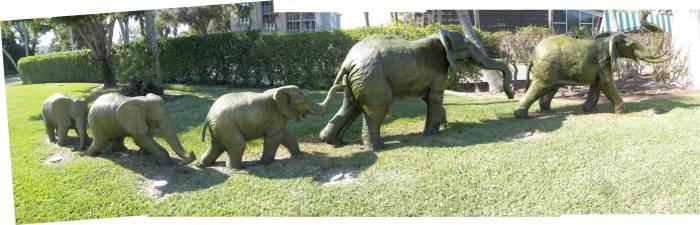 Elephant family at the hotel