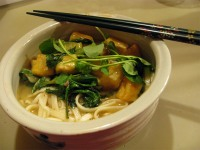 Udon with tofu and vegetables