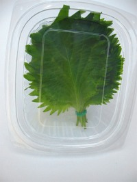 shiso-leaves