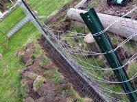 garden-gate_5773