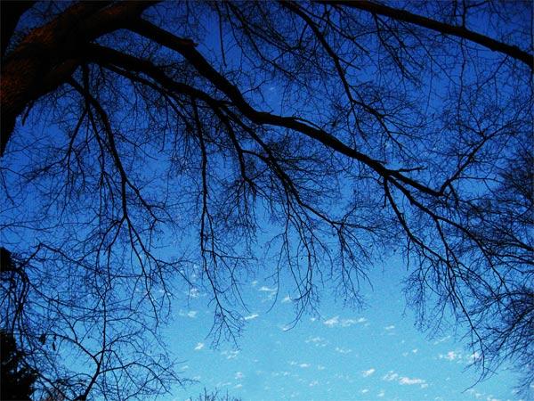 november-sky_9253