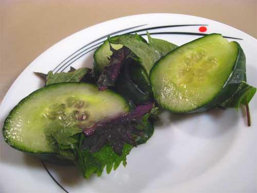 shiso-cucumber-9183