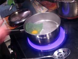 poaching an egg in a poach pod cup