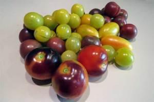 heritage-tomatoes_3511