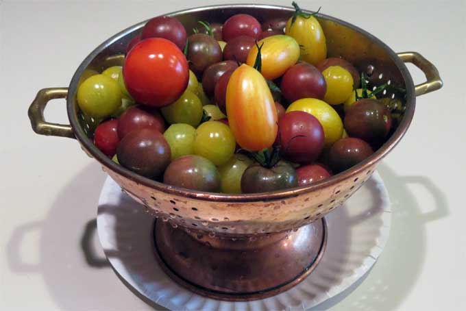 tomato-bounty_3479