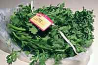 tung ho, shingoku, edible chrysanthemum, garland chysanthemum
