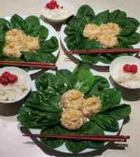 japanese wonton dumpling_6864